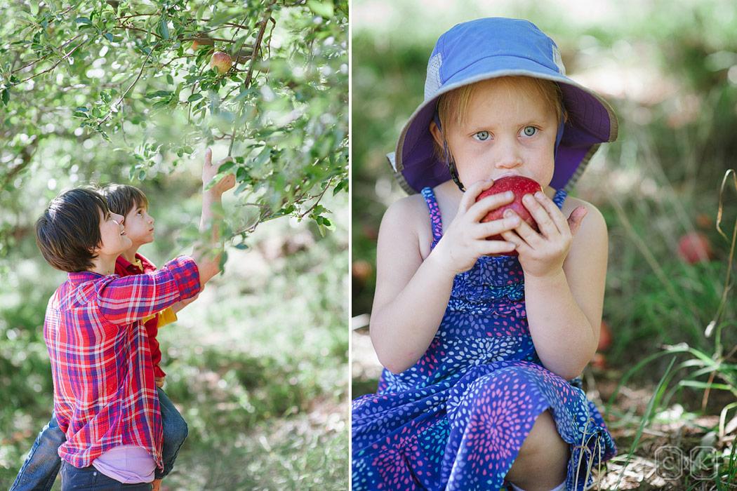 Apple Picking Family Portraits In Sedona Cameron Clark