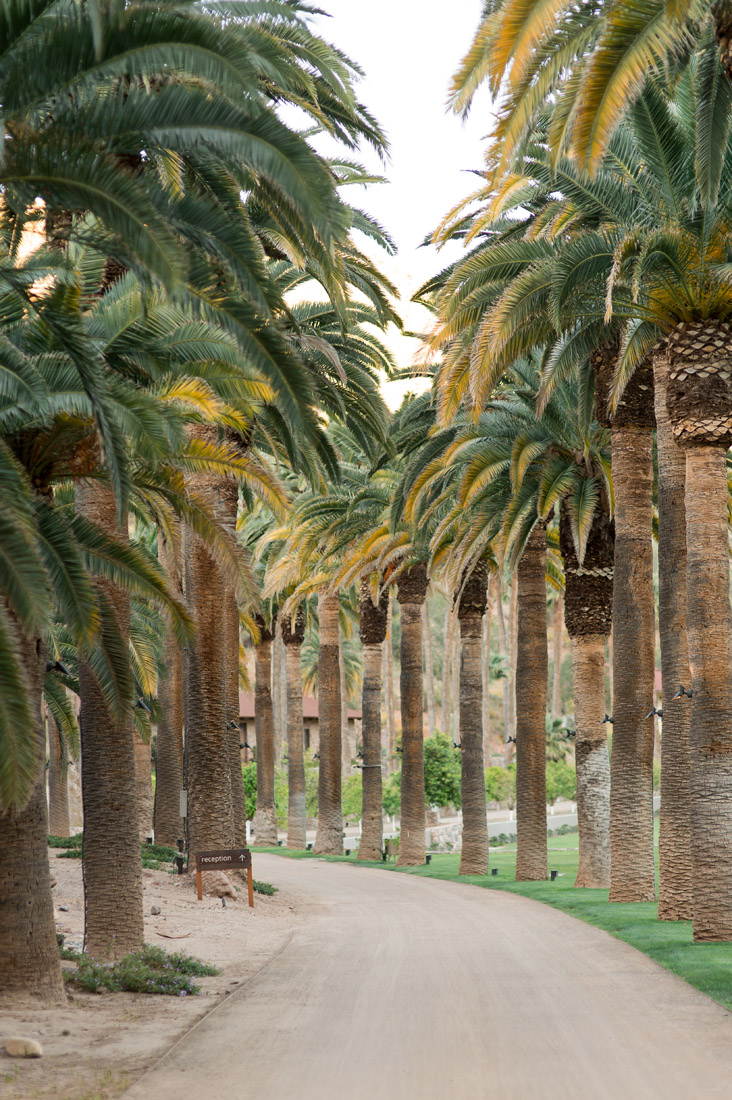 driveway at Castle Hot Springs