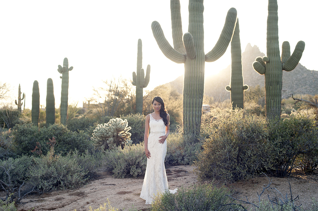 saguaro cactus bride wedding in arizona