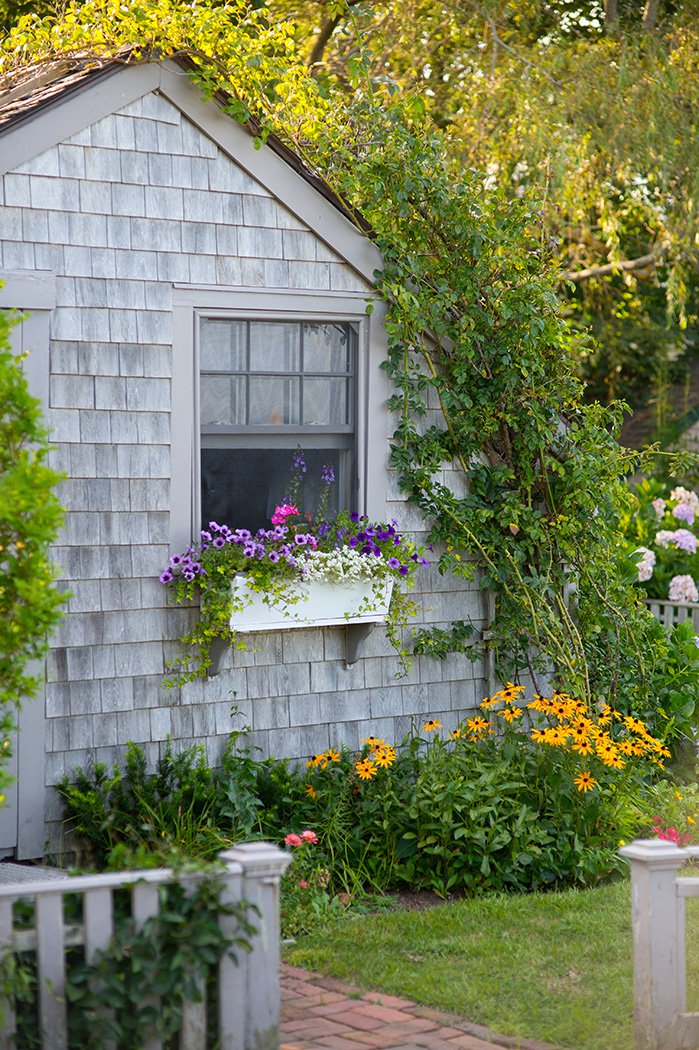 Nantucket home with shingles and floral boxes in the window